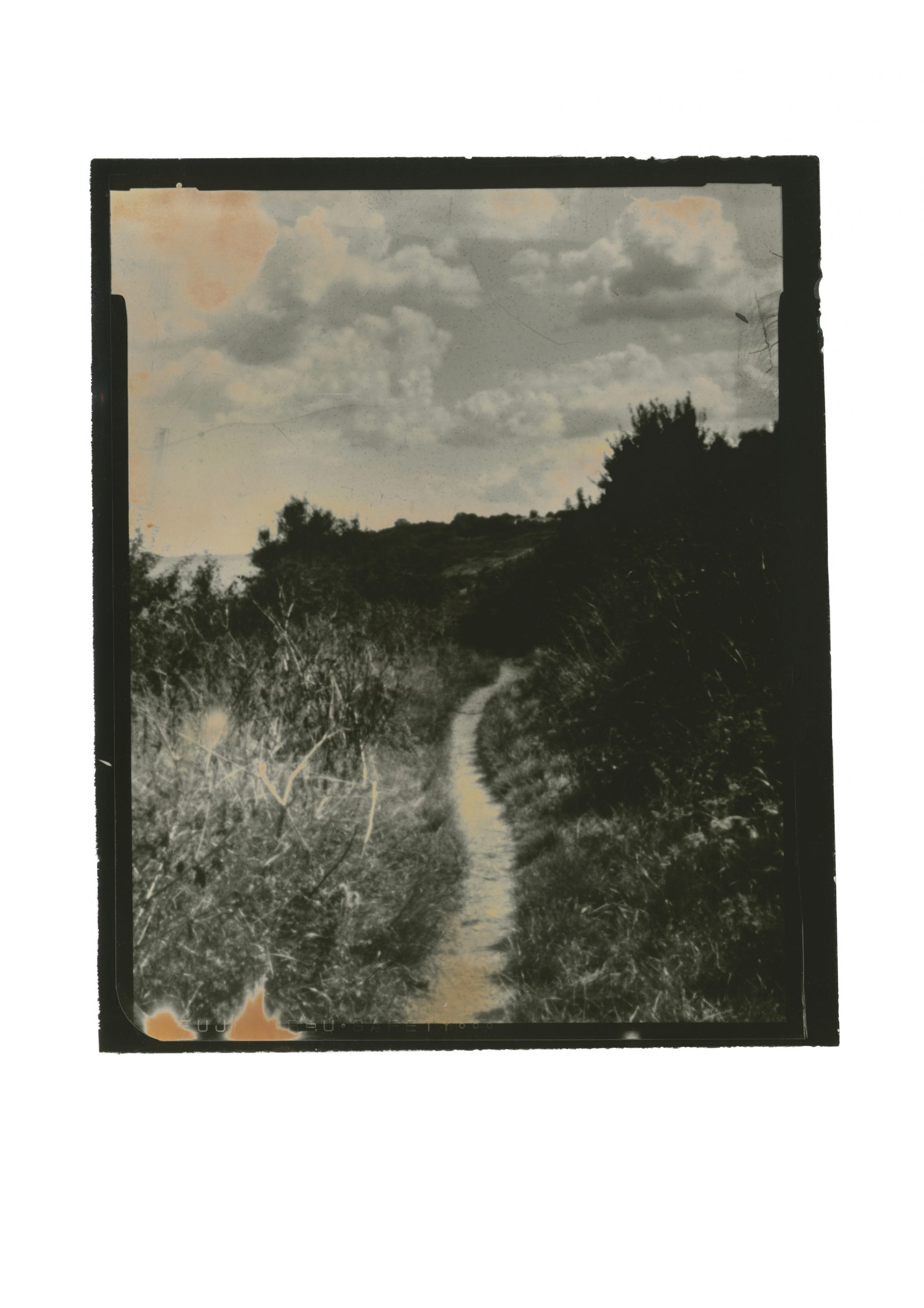 central path amongst overgrown bushes leading to an almost vanishing points it curves out of sight. sky full of clouds with a hint of orange from hand painting