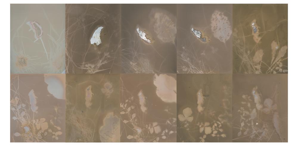 LumenComposite3bslaf246se1
